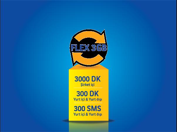 Flex 3GB